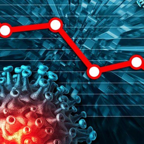 economy durring the pandemic